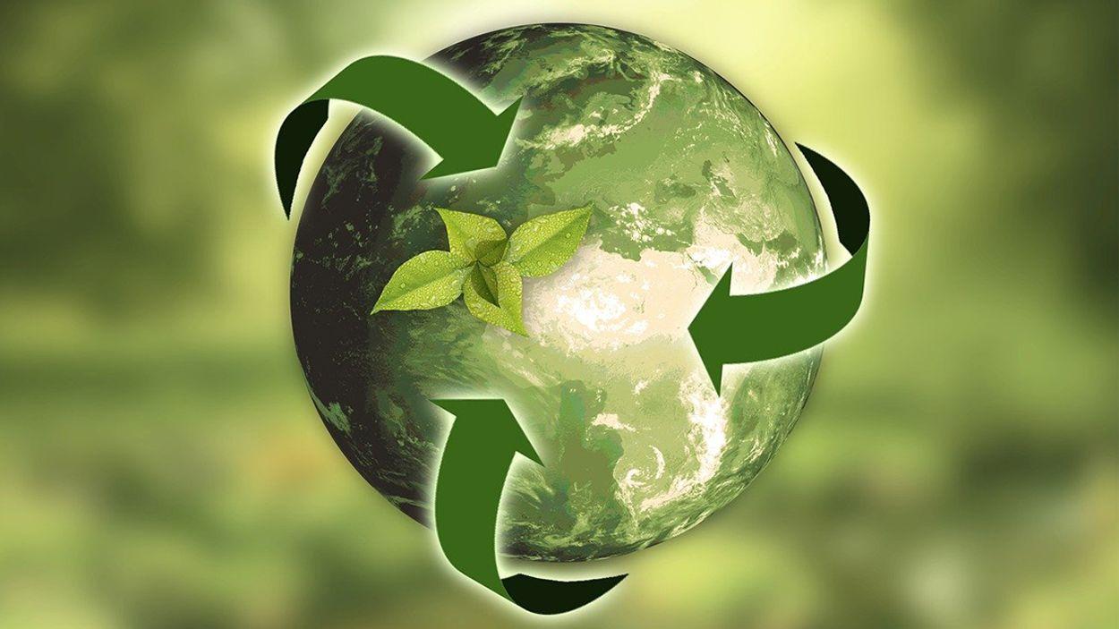 Afbeelding van 'Meer investeren in duurzaamheid bedrijven tijdens corona'