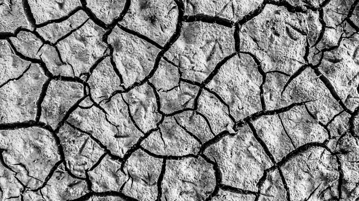 Afbeelding van Tekort aan water dreigt in delen van het land