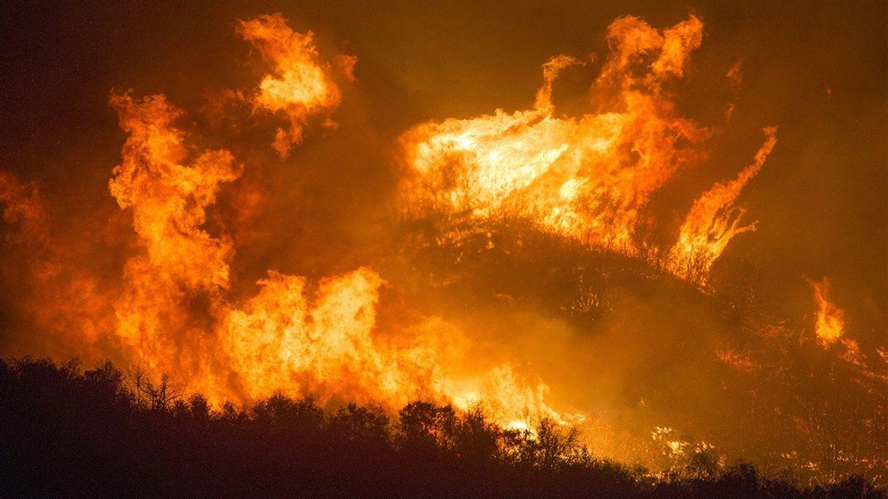 Afbeelding van Branden Noordpoolgebied zorgen voor record CO2-uitstoot