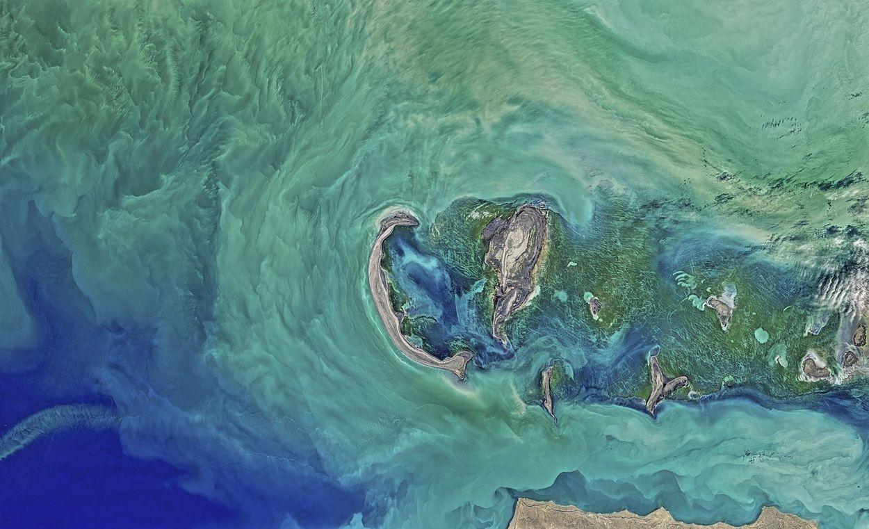 Afbeelding van Zeespiegeldaling bedreigt biodiversiteit Kaspische Zee