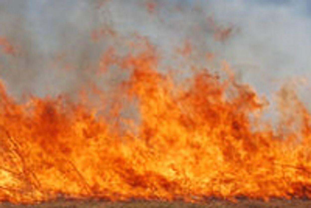 Afbeelding van 'De branden in Rusland zijn geen ver-van-ons-bedshow'