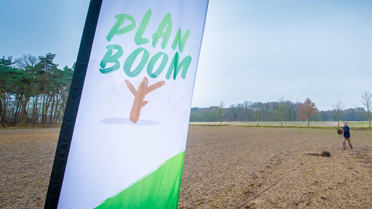 Afbeelding van Groene vrijwilligers planten ruim 40 duizend bomen in Brabant