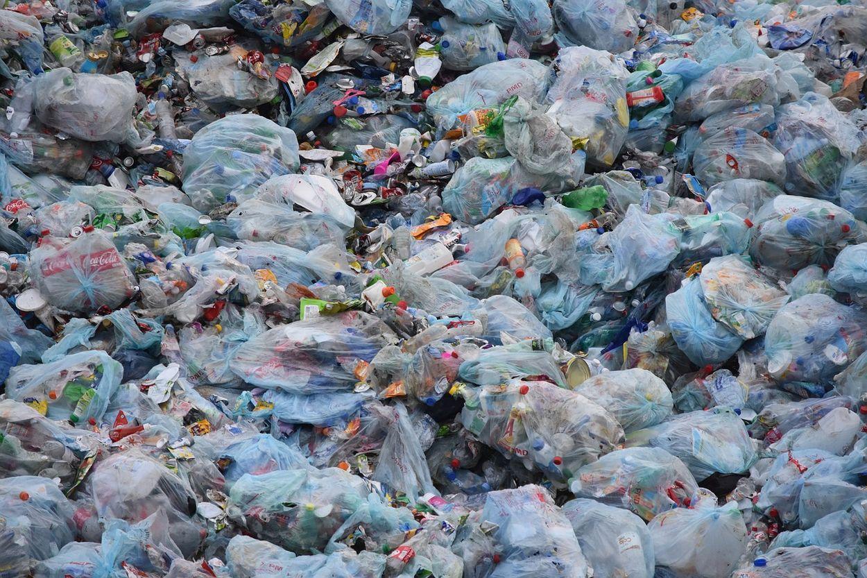 Afbeelding van Driekwart verpakkingen moet in 2025 een nieuw leven krijgen