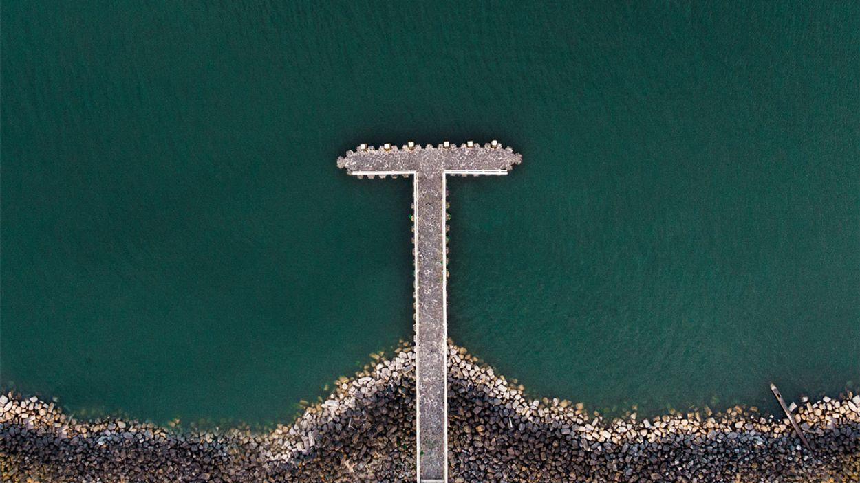 Afbeelding van Afsluitdijk krijgt eigen 'kliffenflora' terug