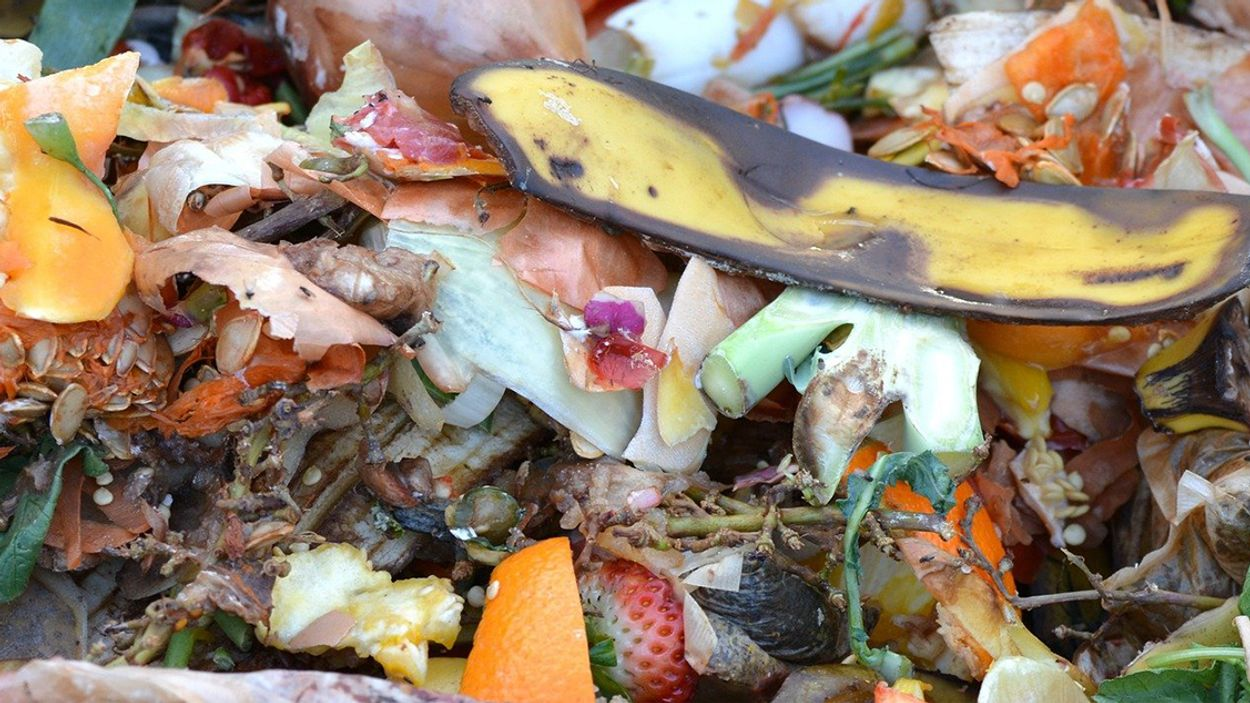 Afbeelding van 'Recyclen gft-afval in gevaar door vervuiling'