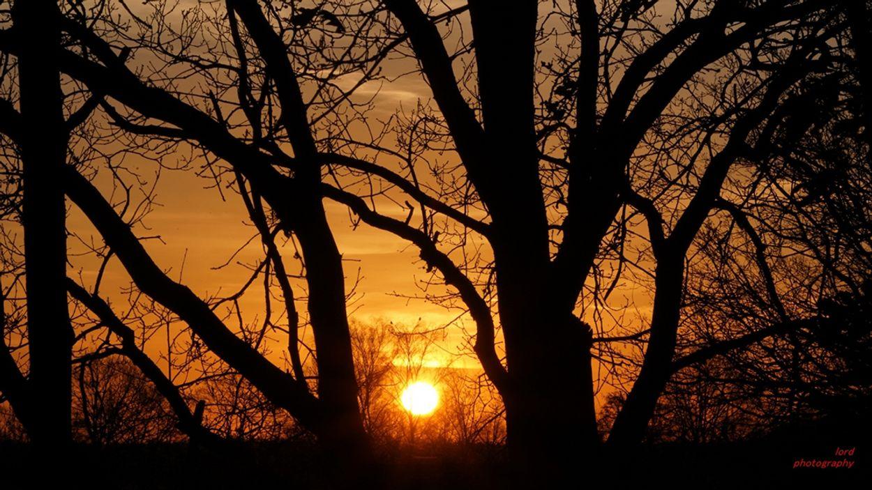 zonsopkomst_weert
