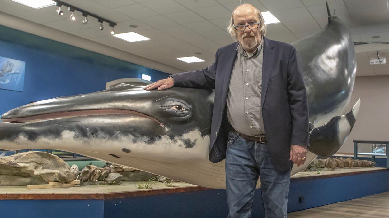Afbeelding van Je eigen walvis uit de oeroceaan
