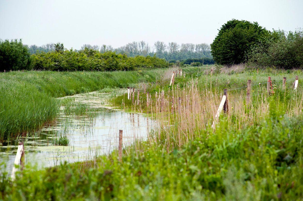Afbeelding van Natuurrijker Nederland ... met een gesloten beurs