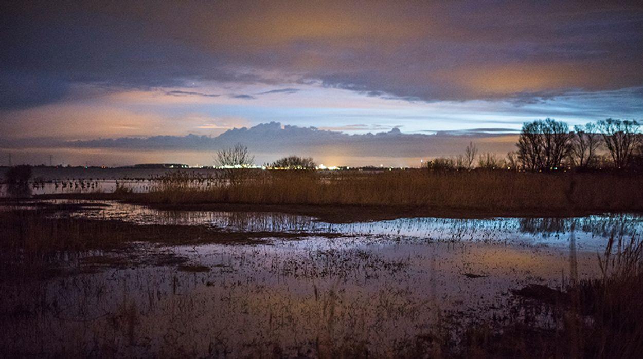 Afbeelding van Coalitie Brabant: kernenergie niet langer speerpunt, stikstofaanpak onveranderd