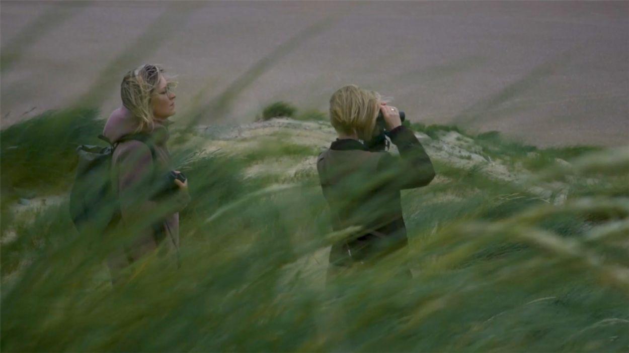 Afbeelding van Schuilen voor de wind in Het Zwin | Achter de schermen