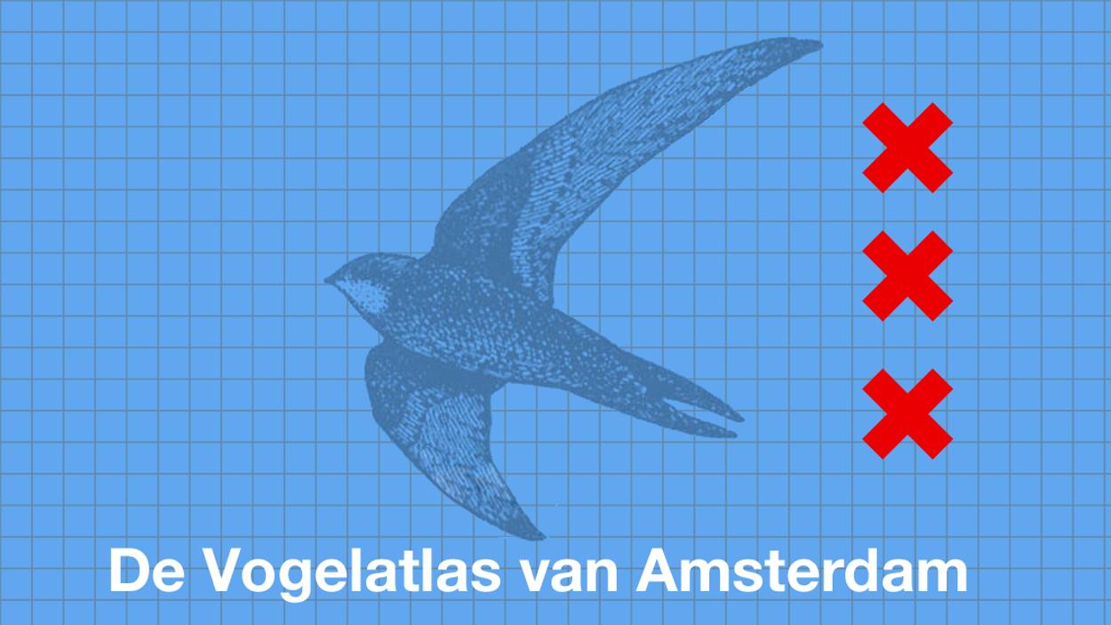 Afbeelding van Amsterdam krijgt een eigen vogelatlas