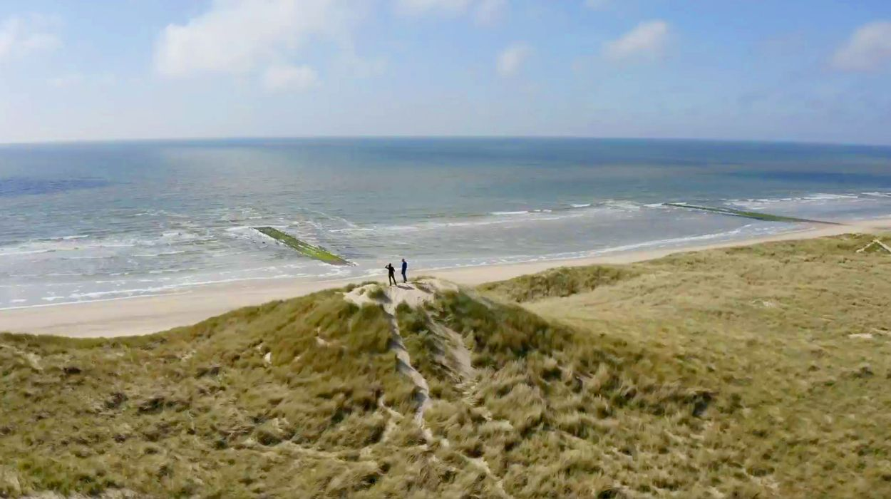 Afbeelding van Droge duinen en vochtige vallei van het Zwanenwater