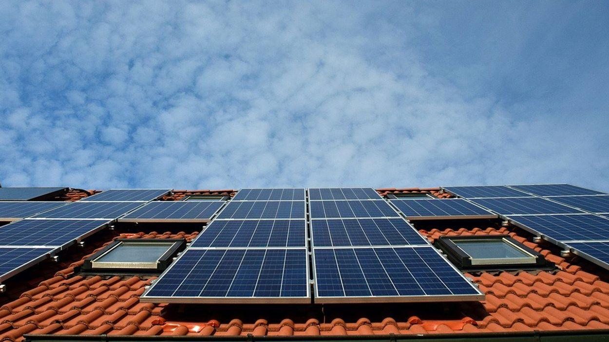 Afbeelding van Grootste dakzonnepark in Nederland met 140.000 zonnepanelen