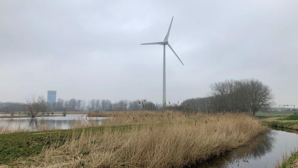 Afbeelding van Groter aandeel hernieuwbare energie in 2020