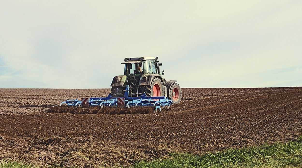 Afbeelding van 'Grote omslag nodig in de landbouw sector'