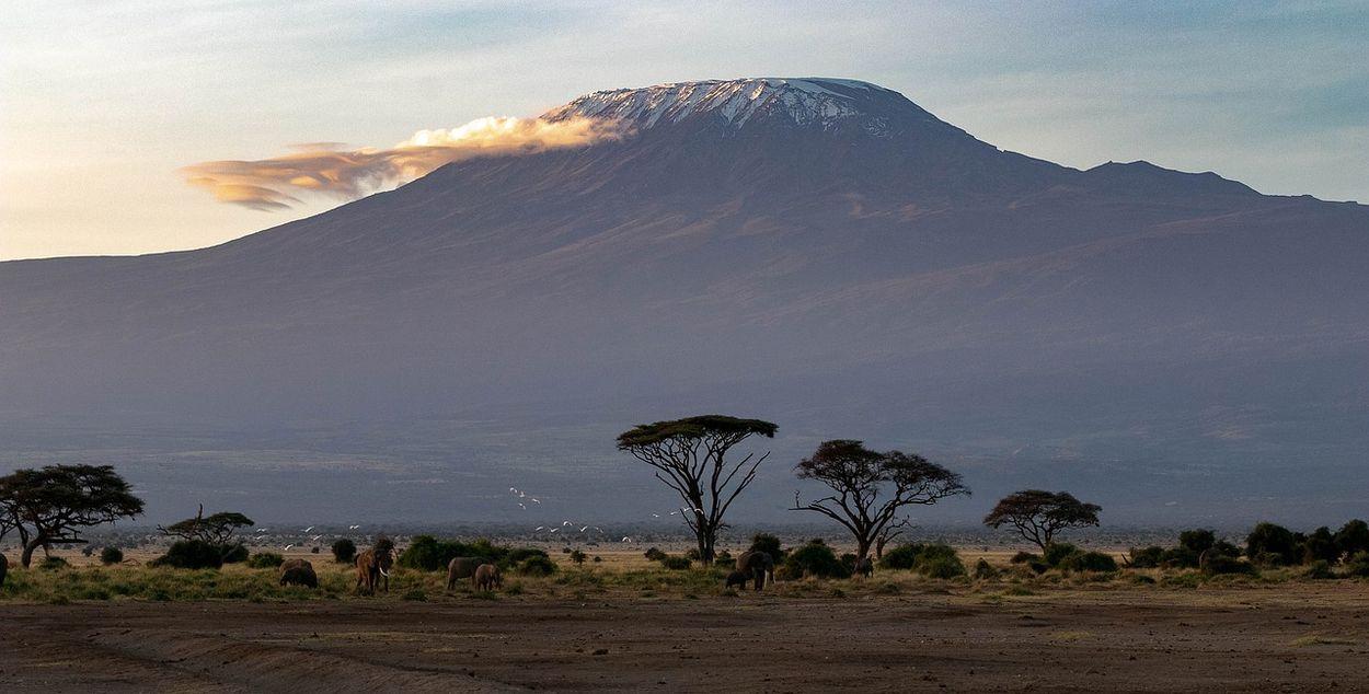 Afbeelding van Top van de berg Kilimanjaro staat in brand