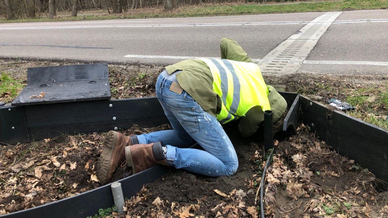 Mark van Heukelum inspecteert padden tunnel (c) Rob Buiter