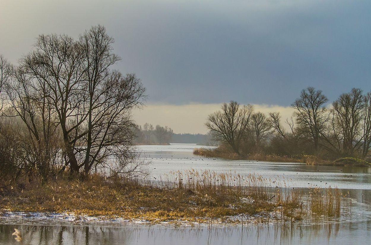 Afbeelding van Speciale uitzending uit het hart van 600 jaar oude Biesbosch