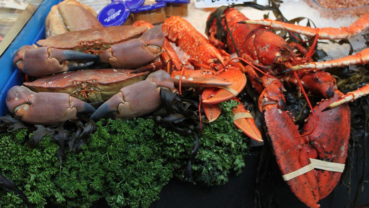 Afbeelding van Amsterdamse markt gaat stoppen met verkoop van bont en levende kreeftachtigen