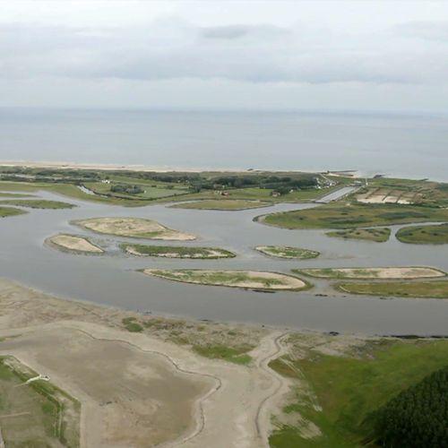 Afbeelding van Waterdunen: getijdegebied achter de duinen