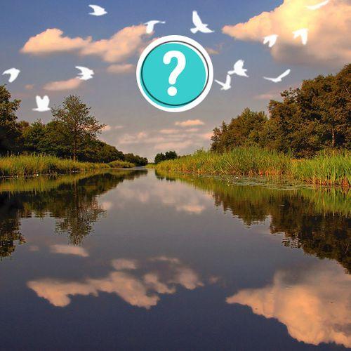 Stel en beantwoord natuurvragen