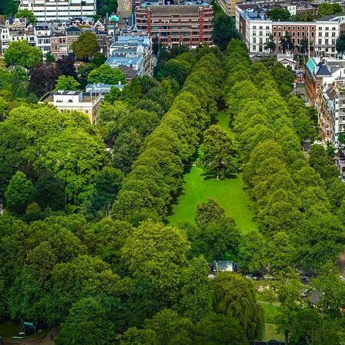 Afbeelding van Initiatiefnota: 'steden hebben meer groen nodig.'