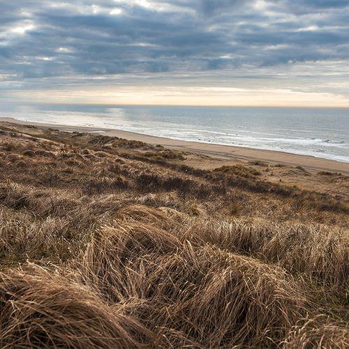 Afbeelding van Einde aan dierproeven, de dag van de duinen en alle overige onderwerpen