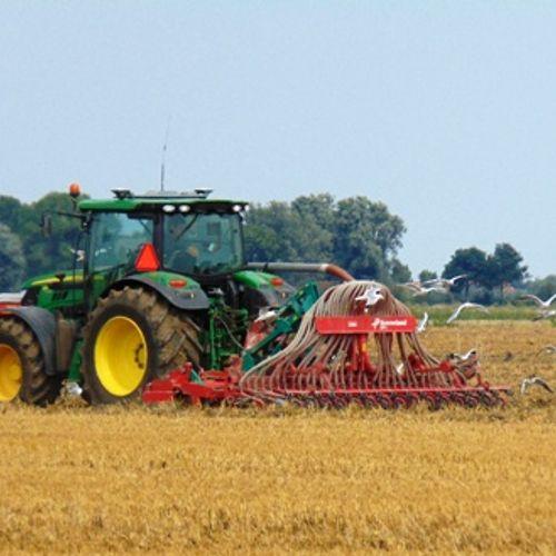 Afbeelding van Experts: onteigenen boeren kan stikstofcrisis voor 2025 oplossen