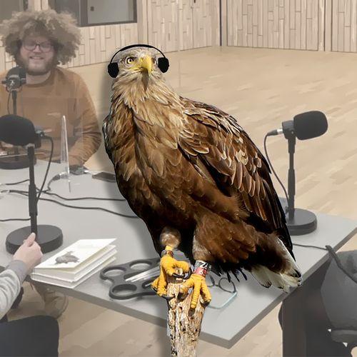 Afbeelding van Mooiste natuurbeelden en een nieuwe dierenpodcast bij Vroege Vogels