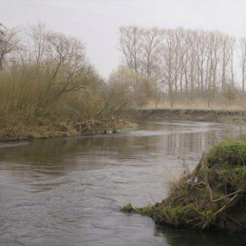 Afbeelding van Van zwart, levenloos water naar wonderschone rivier