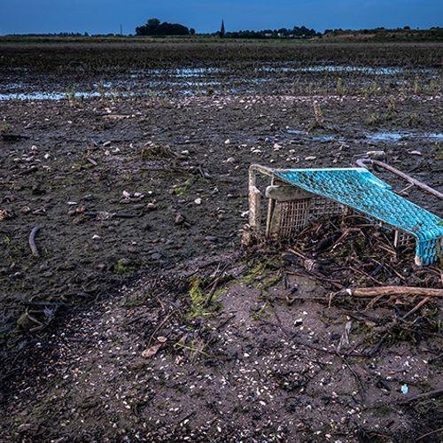 Afbeelding van Eerste opruimacties Natuurmonumenten langs de Maas achter de rug