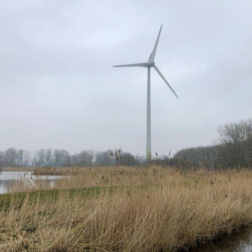 Afbeelding van Duurzame energie voor iedereen, van iedereen