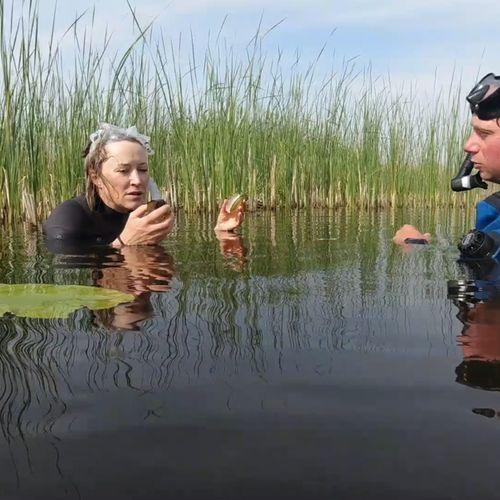 Afbeelding van Afkoelen in het Naardermeer | Achter de schermen