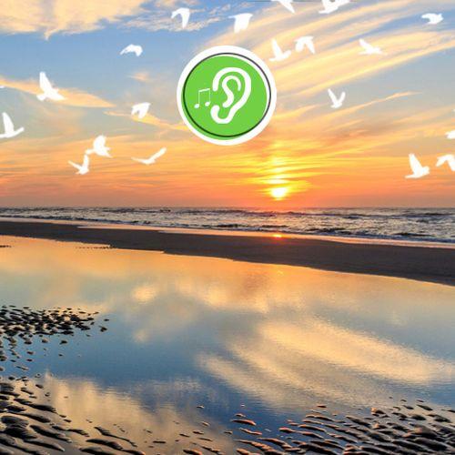 Deel met ons je mooiste natuurgeluiden