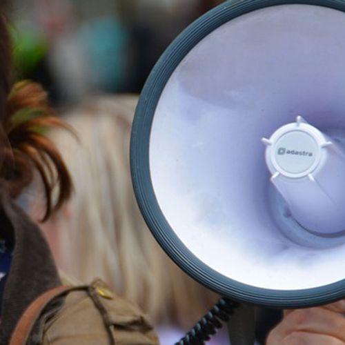 Afbeelding van Activisten voeren actie tegen zuivelproductie