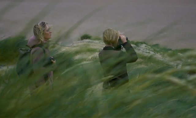 Afbeelding van Schuilen voor de wind in Het Zwin   Achter de schermen